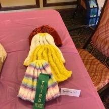 State Fair Celebration-Villas of Oak Park-colorful knit hat won third place